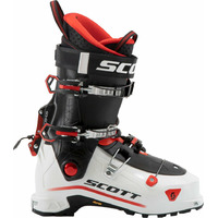 Cosmos White/red - 31